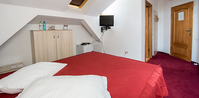 Single room Hotel Tudor